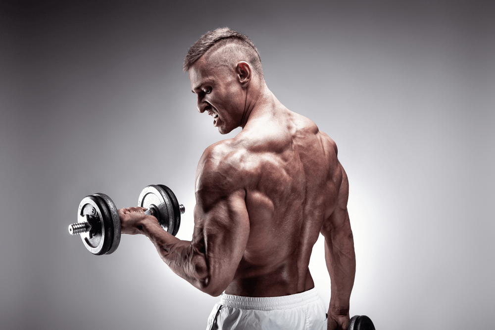 Save your Back, blast your Traps