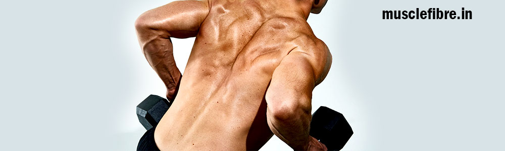 The Best Back Workout you can get